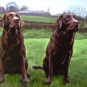 Brown Labradors. Oil On Canvas 100 x 70 cm